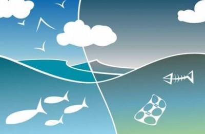 Calo del 30% del numero dei sacchetti di plastica dispersi nei mari inglesi