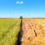 Un rimedio naturale per la tutela della biodiversità: l'agro-ecologia