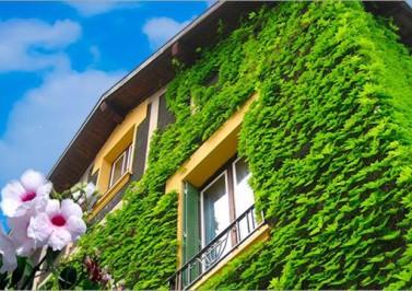 Il cappotto verde per l'efficienza energetica delle case