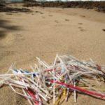 Serve mezzo millennio per biodegradare una cannuccia di plastica