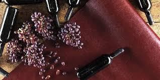 Pelle di vino
