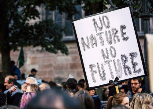 I giovani sollecitano le aziende verso la sostenibilità